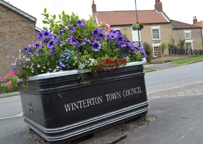 Winterton Council planter in full bloom