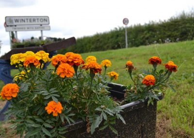 Planter in full bloom in front of a Winterton Town sign